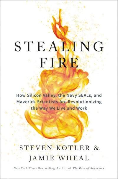 Steven Kotler, Jamie Wheal - Stealing Fire