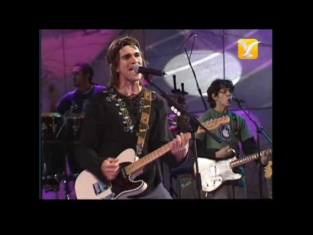 Juanes, La Noche, Festival de Viña 2003