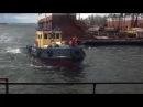 Администрация Волгограда обзаводится собственным флотом