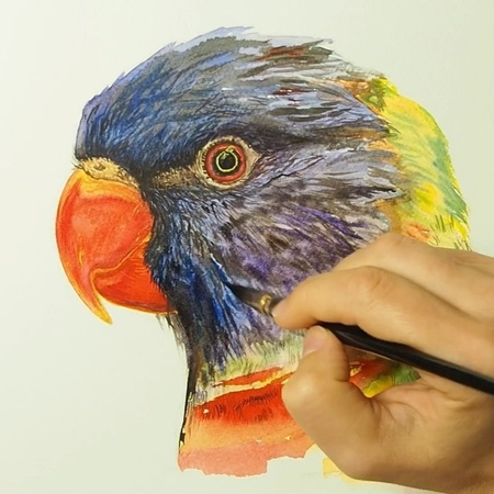 Rainbow Lorikeet (head😋) ⠀ It's been my coming back to the @ nevskayapalitra watercolors set that I bought about two years ago f
