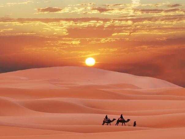 Обои На Рабочий Стол Пустыня