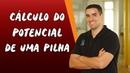 Cálculo do Potencial de uma Pilha Brasil Escola