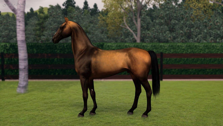 Регистрация лошадей в RHF 2 - Страница 8 Ys7LbmmVn1Y