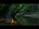 4K Campfire by the River Relaxing Fireplace Nature Sounds Robin Birdsong UHD Video 2160p