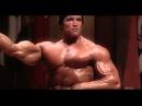 Бодибилдинг мотивация Арнольд Шварценеггер Arnold Schwarzenegger