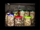 Маринованные грибы рецепт Заготовки на зиму