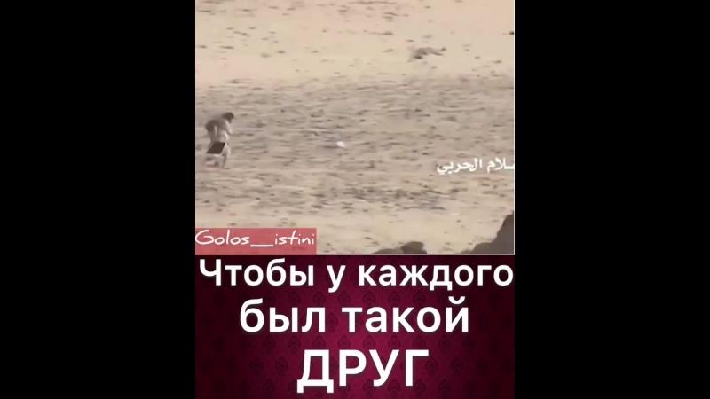 VIDEO 2019 07 11 20 14