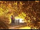 Крылья любви исполняет Любовь Шепилова