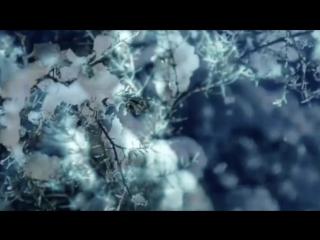 """Песня на все времена-""""Снег кружится"""" ВИА """"ПЛАМЯ"""" (1980)"""
