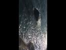 Море, Алупка, залипон