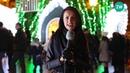Świąteczne życzenia Katarzyny Zvonkuvienė
