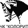 """Верховая езда в Шахтах. ЧК """"Колорит""""."""