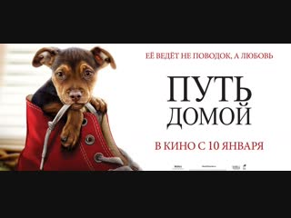 Путь домой / dog's way home - официальный трейлер