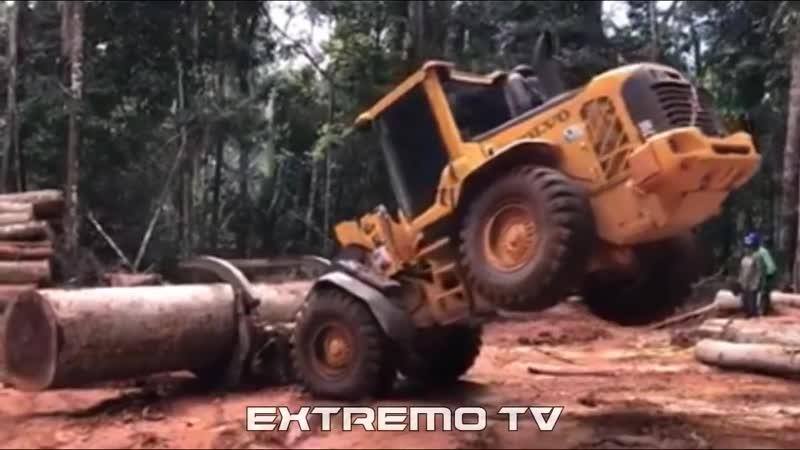 ESPECIAL MAFIA DA TORA _ SUCO DO PICA PAU - EXTREMO