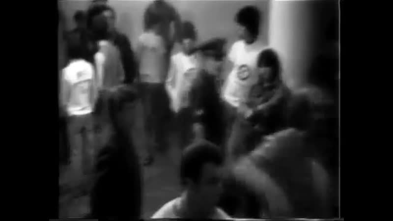 копы срывают выступление The Freeze и SS Decontrol [22.08.1981]