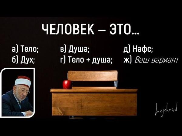 Человек — это… Что такое человек? Тело? Разум? Душа? Дух? Нафс? Шейх Рамадан аль-Буты.
