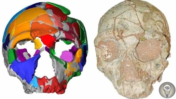 Найдены останки древнейшего человека запределами Африки