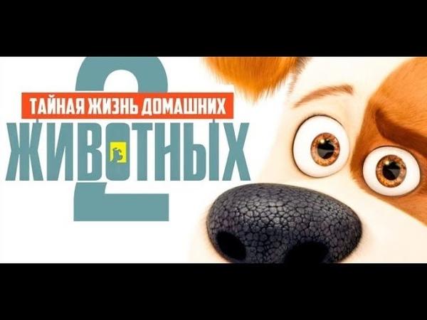 Тайная жизнь домашних животных 2мультфильм тайная жизнь домашних животных 2тайная жизнь 2019