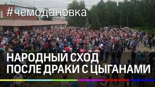 Война против цыган в Чемодановке. Сотни человек вышли на сход