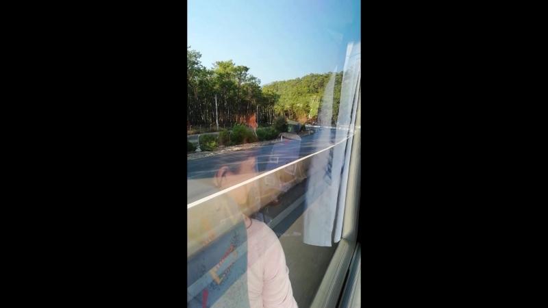 Поездка из аэропорта в отель Анита Венус бич хотель