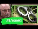 Несправедливость законов о наркотиках   Грэм Хэнкок   Джо Роган на русском