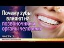 Почему зубы влияют на позвоночник и органы человека. Михаил Сватковский. Часть 2