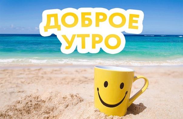 Доброе утро! Отличного дня!