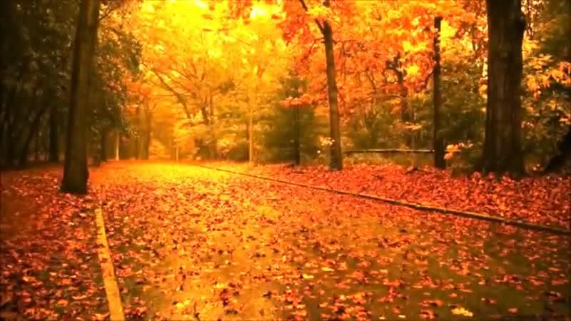 Сесиль Бреди - Осенние листья