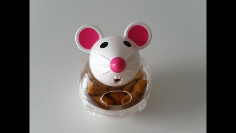 Die Dreamies Snacky-Mouse-Challenge | Kimbi Energy