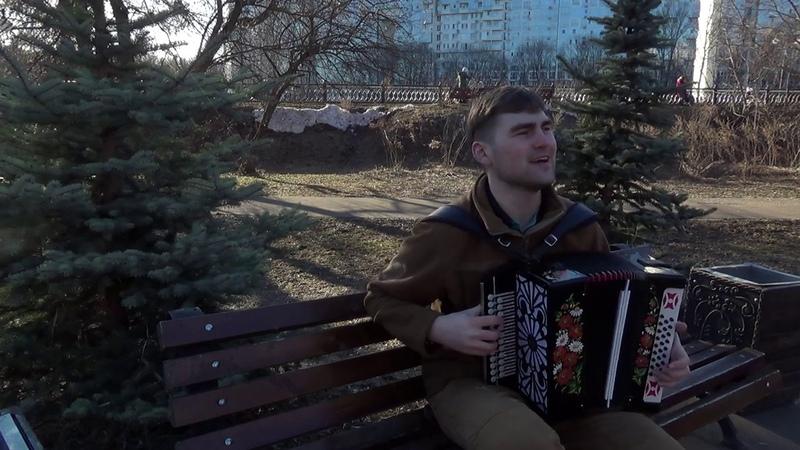 Вижу сон - Есенин под гармонь | Власов Владислав