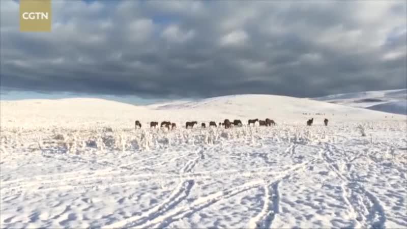 Холодный фронт обрушились на Синьцзян-Уйгурский автономный район КНР и принёс первый снегопад