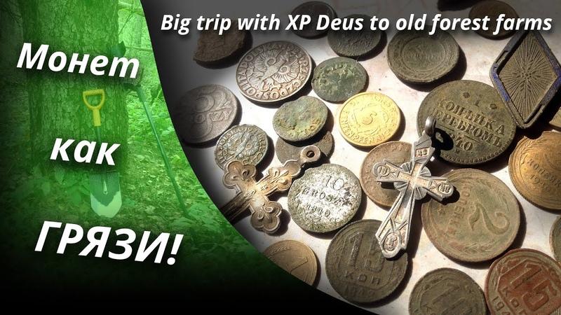 ОТОРВАЛСЯ ПО ПОЛНОЙ Большое путешествие с XP Deus по лесным хуторам Big trip with XP Deus