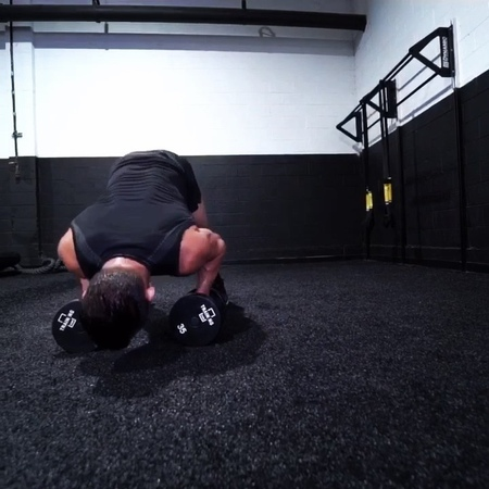 """Michael Chandler on Instagram """"workoutoftheday - dumbbell flow from all fours. - JACK KNIFE PUSHUP AND ROW - There isn't much to this workout except to find the weight…"""""""