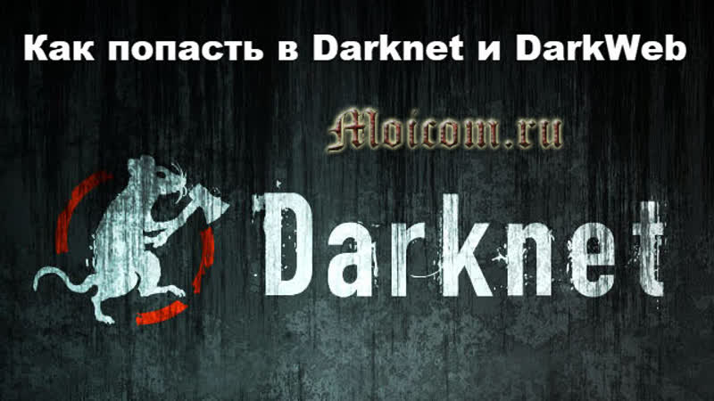 Darknet video попасть на гидру браузер тор это опасно hyrda