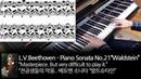 L.V.Beethoven - Piano Sonata No.21 in C major, Op.53 Waldstein