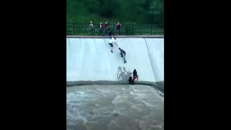 Спасение собаки, попавшей в водный поток