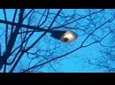 фонарь в парке лта