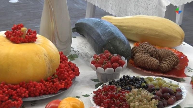 Традиционные выставки «Осенний Букет» и «Дружок на ладошке» состоялись в ДТиД «Юность»