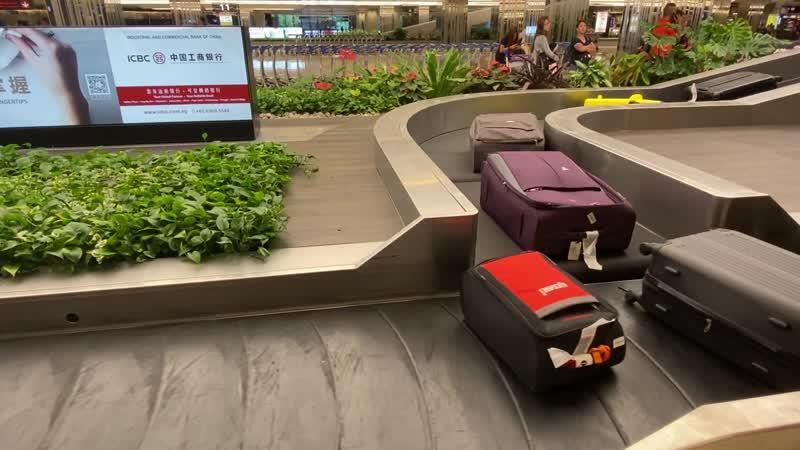 Прибытие багажа в сингапурский аэропорт Чанги
