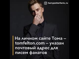 5 интересных фактов о Томе Фелтоне