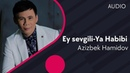 Azizbek Hamidov Ey sevgili Ya Habibi cover by Seyyid Taleh Boradigahi