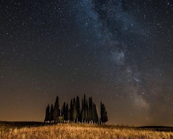 Выхожу, значитца, с работы, время позднее, микрорайон, фонари у дороги не работают, голое поле за остановкой, темнота и потому яркие звезды и Венера горит, словно люстру в небе включили Рядом