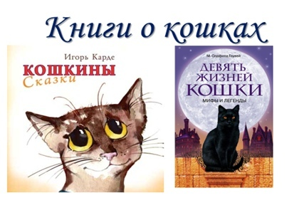Урок доброты «Эти удивительные кошки», изображение №11