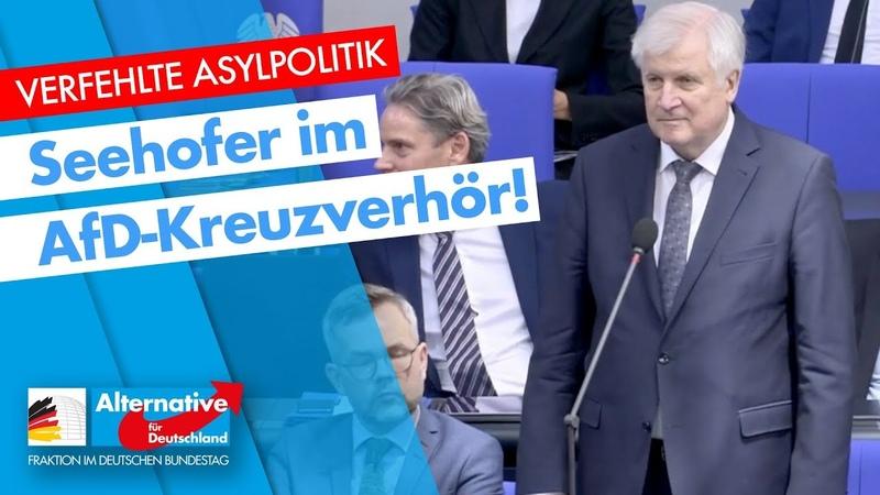 Verfehlte Asylpolitik Seehofer im AfD Kreuzverhör