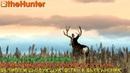 TheHunter Classic Рубрика помощь новичкам последняя миссия на чернохвостого оленя mule deer mission