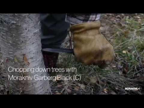 Chopping down trees with Morakniv Garberg Black C
