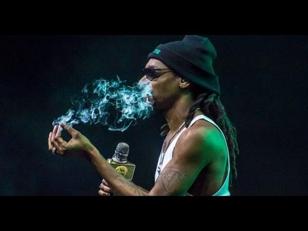 Tha Doggs House Green Room — Ice Cube — Smoke Some Weed [Fun-video]