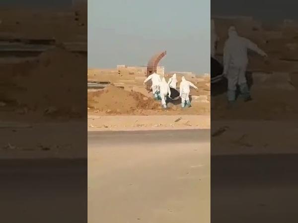 Iran transportation of a dead body Coronavirus