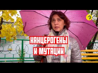 Свалка обещаний в Дмитриевке. Чем она опасна