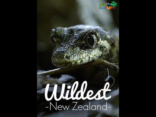 Дикая Новая Зеландия Wildest New Zealand Серия2 Первозданный Запад 4К